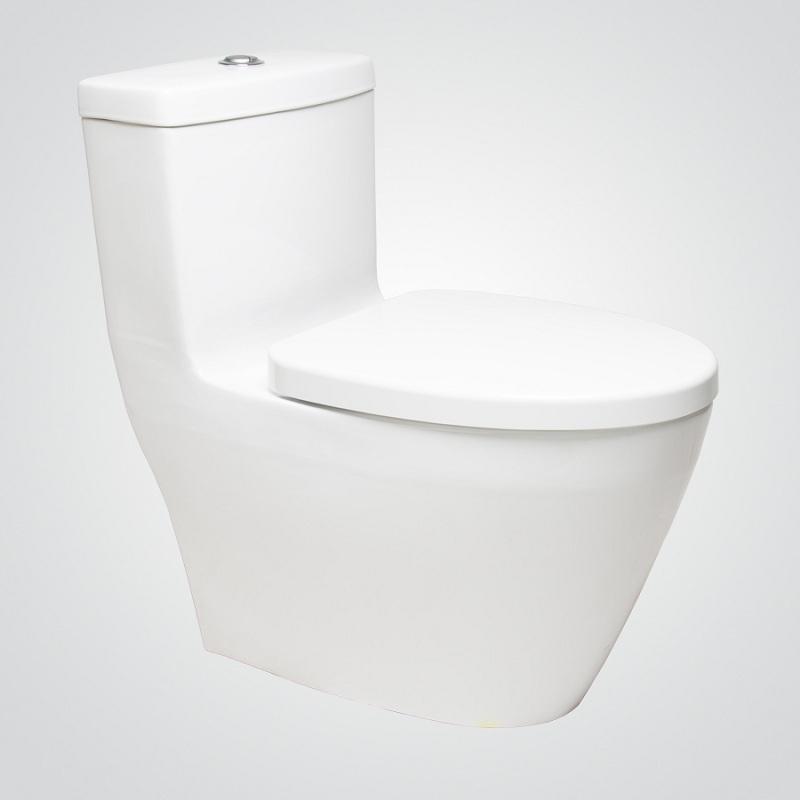 WC One Piece Fonte Dual Flush Blanco